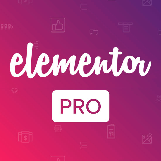 What is the Elementor Pro?