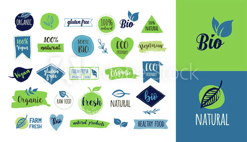 Graphic Design and Web Design Courses Rushden