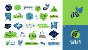 Graphic Design and Web Design Courses Winsford