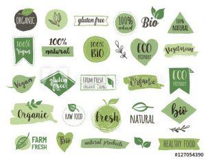 Graphic Design Courses Market Harborough