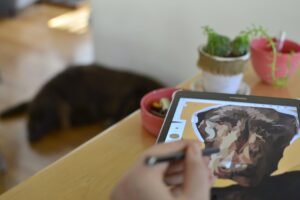 Read more about the article What Drawing Tablet Do Professionals Use?